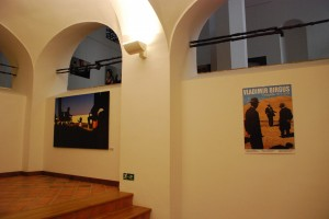 V. Birgus. Wystawa wOpawie (2014)
