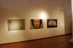 Fragment ekspozycji (Opawa 2014)