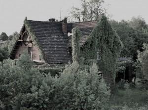 Nieborowice. Zapomniana stacja kolejki wąskotorowej...