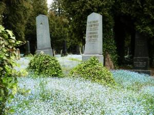 Cmentarz żydowski I. Opawa