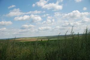 Okolice osady Mużyłowice (dawniej Muenchental), stan 2010