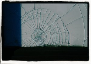 Sieć / Web