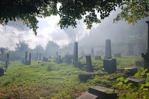 Mist. Krnov Jewish cementary /  Mgła. Karniów. Cmentarz