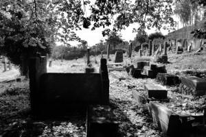 Pozostałości. Karniów, cmentarz żydowski