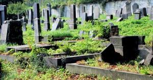 Some stand, some are gone / Niektore trwają, inne zniknęły. Krnov Jewish cementary