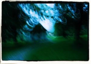 Cienie wzielonym / Shadows in green