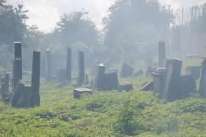 cmentarz kolor