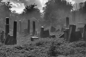 cmentarz zydowski Krnov
