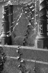 Przenikanie. Karniów, żydowski cmentarz (2014)
