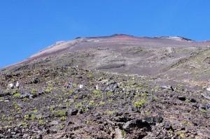 Szczyt Fuji ipielgrzymi natrasie