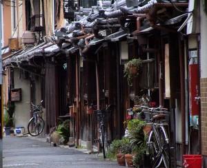 Zagęszczenie / Density, Kyoto, Japan