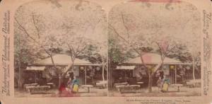 Japonia jako miejsce niezwykłe. Podkolorowana fotografia stereoskopowa. Widok zNary (1896)