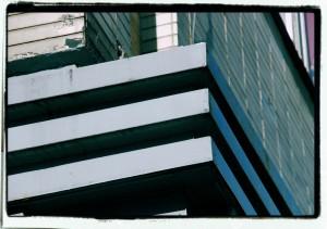 Linie Mendelsohna / Mendelsohn's Lines (ex-Bachner's department store)
