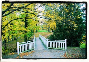 Bridge in autumn landscape .