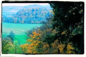 Kolory jesieni / Colors of autumn
