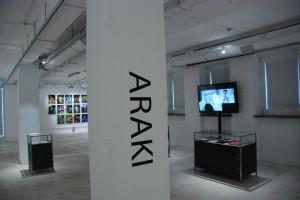 Araki. Fragment ekspozycji