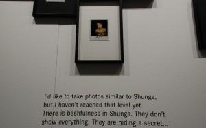 Shunga byAraki (fragment wystawy)