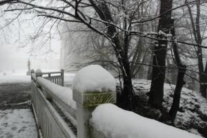 Trochę śniegu / A little bit of snow