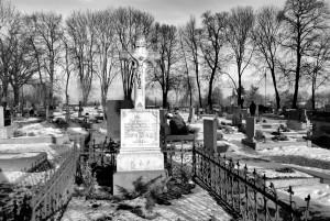 Cmentarz (Sudice, 2015)