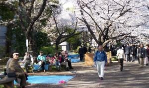 A oporanku błękitne maty pustoszeją... (seria: Hanami, 2007)