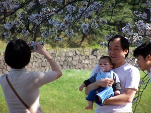 Catching the moment (2) (Tokio, Sakura 2007)
