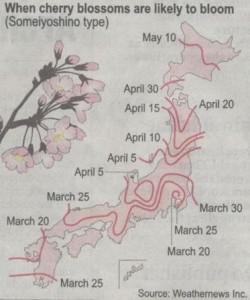 Prognoza kwitnienia wiśni (wiosna 2007; źródło: The Japan Times)