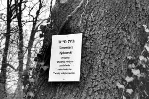 Prośba. Dawny cmentarz żydowski, Racibórz (2015)
