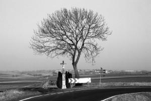 Dwie drogi / Two roads (okolice Krzanowice - surroundings of Kranowitz)