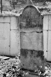 Przebarwienia. Cmentarz żydowski w Krnowie (dedykowane)