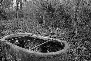 Odbicie (dawny cmentarz ewangelicki wRaciborzu)