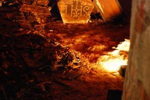 Poszukiwania [Opawa; zdjęcie z wykopalisk w kościele św. Ducha w Opawie poszukujacych szczątków Przemyślidów, lato 2014]