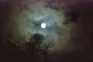 Księżyc nad Opawą