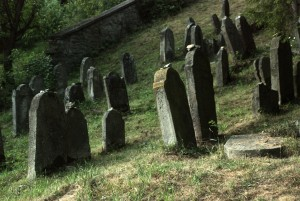 Before the dawn. Muszyna, Jewish cementary