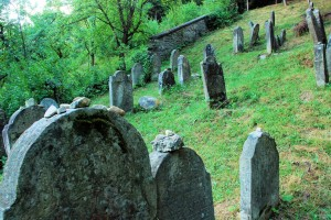 Memory (Jewish cementary in Muszyna)