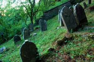 Small, forgotten place (Jewish cementary in Muszyna)