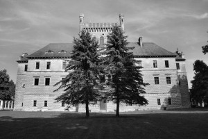 Dwa drzewa (Książ Wielki, pałac)