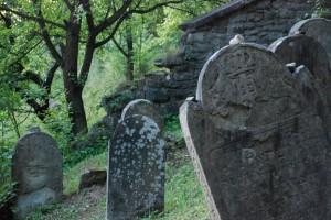 Levy's Family. Muszyna, Jewish cementary