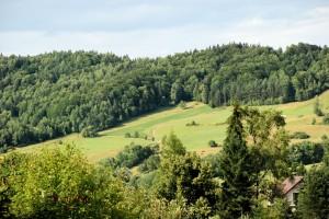 Ziemia Łemków (okolice Wojkowa)