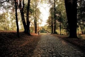 Droga zamną (Krasnogruda)