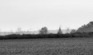 Pławniowice (wodddali wieża Pałacu; marzec 2015r.)