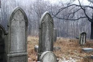 Dwa / Two (cmentarz żydowski wPyskowicach)