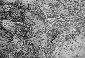 Rozbieranie, H. Bellmer (1951) (fragment)