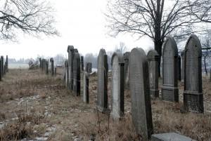 Wciąż stoją (2) / They still stand (d.cmentarz wPyskowicach - old Jewish cemetery in Pyskowice)
