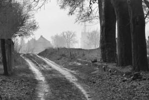 Droga na/ Road to... (d.cmentarz żydowski wPyskowicach)