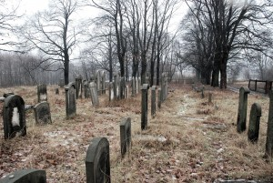 Wciąż stoją / They still stand (d.cmentarz wPyskowicach/till 1945 Peiskretscham)