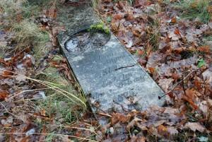 Urodzony... zmarł... / Born... Died... (cmentarz żydowski wPyskowicach)