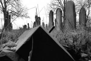 I kamień zapłacze / This stone shall cry... (Pyskowice, old Jewish cemetery)