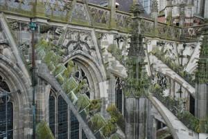 Katedra św.Jana Ewangelisty w's Hertogenbosch (elewacja południowa)