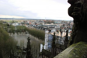Green city / Zielone s-Hertogenbosch (seen from the roof of the cathedral)