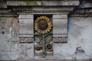 Bytomski słonecznik